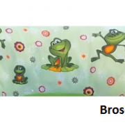 Mostra_Broscute_perna_gravide_si_alaptare.png